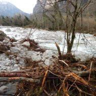 """""""Gestione dei corsi d'acqua nel contesto post-alluvione"""", Pieve di C. 28-01-019"""